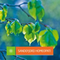 Pollenallergi, Sandefjord Homeopati : Sandefjord Helsepark